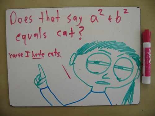 Whiteboards A Love Story Math With Bad Drawings